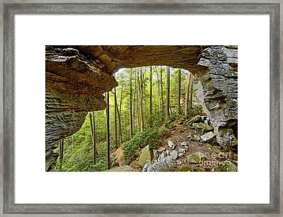 Split Bow Arch - D005237 Framed Print by Daniel Dempster