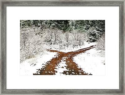 Split Decision Framed Print by Marilyn Hunt