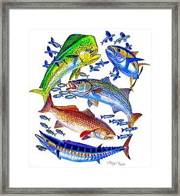 Sportfish Collage Framed Print by Carey Chen