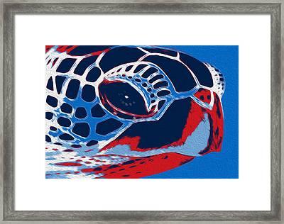 Spot Framed Print by Jack Zulli