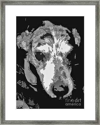 Spotted Dog Black And White Framed Print by Minding My  Visions by Adri and Ray