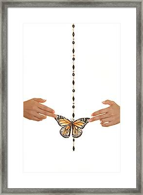 Spread Your Butterfly Wings Framed Print by Dario Infini