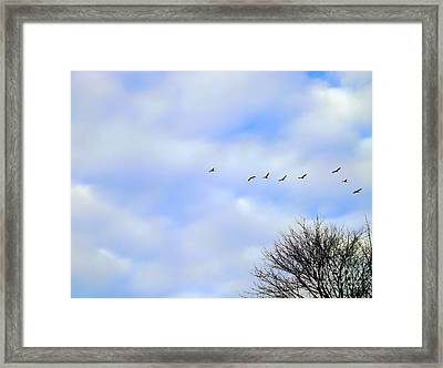 Spread Your Wings And Fly Framed Print by Robyn King