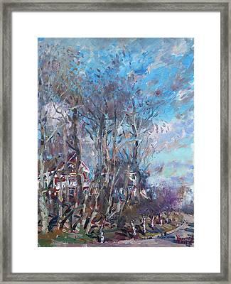 Spring 2013 Framed Print by Ylli Haruni