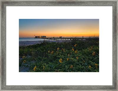 Spring At City Pier Framed Print by Darylann Leonard Photography