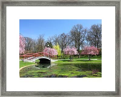 Spring At Italian Lake Framed Print by Lori Deiter