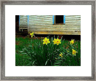 Spring At The Old Home Place Framed Print by Julie Dant