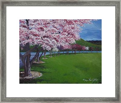 Spring Blossoms Framed Print by Monica Veraguth