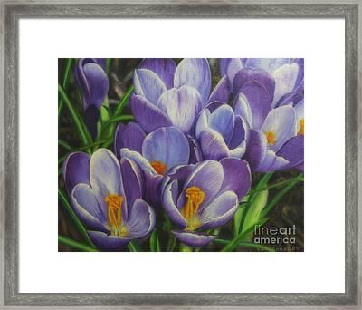 Spring Blossoms Framed Print by Veikko Suikkanen