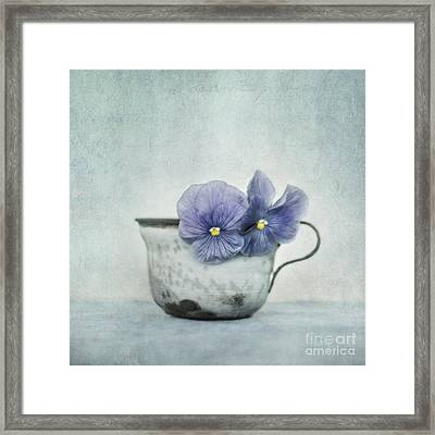 Spring Blues With A Hint Of Yellow Framed Print by Priska Wettstein