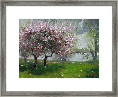 Spring By The River Framed Print by Ylli Haruni