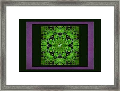 Spring Chorus Mandala Framed Print by I'ina Van Lawick