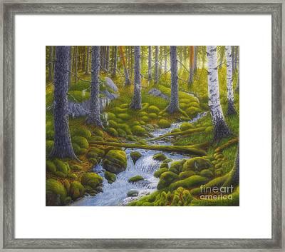 Spring Creek Framed Print by Veikko Suikkanen