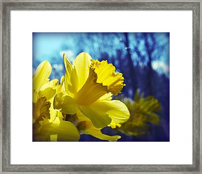 Spring Dreams Framed Print by Mary Zeman
