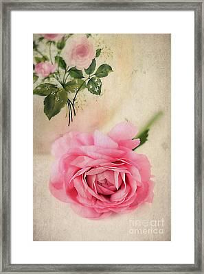 Spring Elegance Framed Print by Darren Fisher