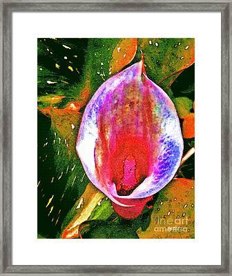 Spring Fever Framed Print by Jeff McJunkin
