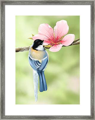 Spring Fever Framed Print by Veronica Minozzi