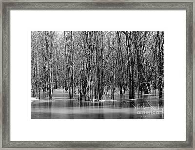 Spring Flooding Framed Print by Sophie Vigneault