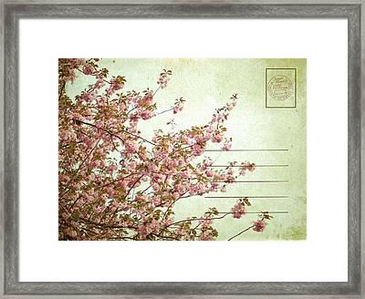 Spring Floral Framed Print by June Marie Sobrito