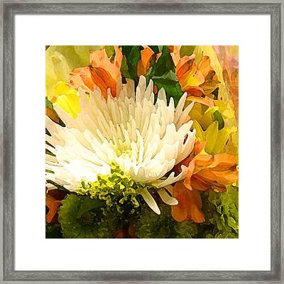 Spring Flower Burst Framed Print by Amy Vangsgard