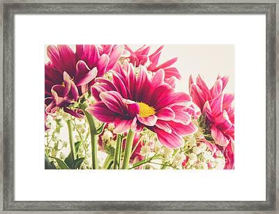 Spring Flowers Framed Print by Lisa Killins