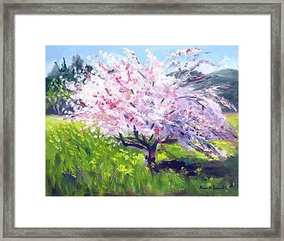 Spring Glory Framed Print by Karin  Leonard