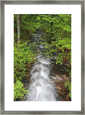 Spring Green Framing Bubble Brook  Framed Print by Juergen Roth