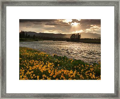 Spring In Harriman State Park Framed Print by Leland D Howard