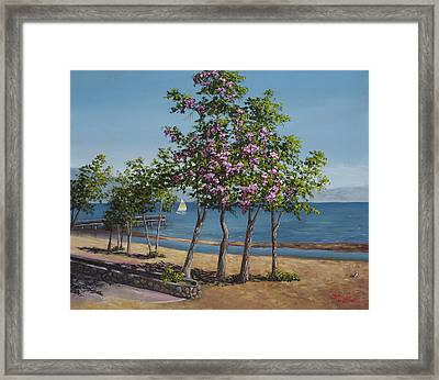 Spring In Kings Beach Lake Tahoe Framed Print by Darice Machel McGuire