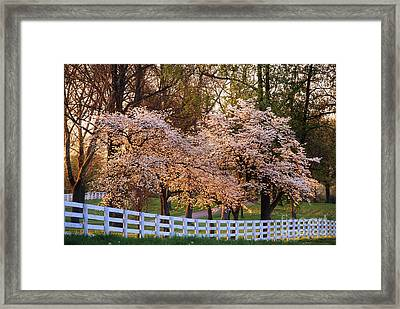 Spring In The Bluegrass - Fs000247 Framed Print by Daniel Dempster