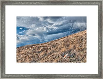 Spring In The Canadian Foothills Framed Print by Heather Simonds