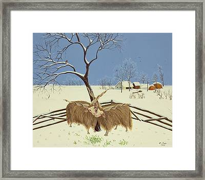 Spring In Winter Framed Print by Magdolna Ban