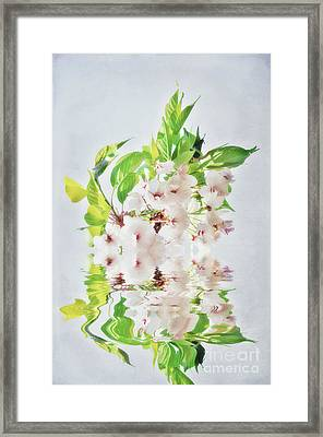 Spring Inspiration Framed Print by Angela Doelling AD DESIGN Photo and PhotoArt
