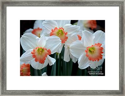 Spring Jonquils Framed Print by Kathleen Struckle