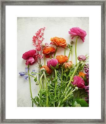 Spring Joy Framed Print by Lupen  Grainne