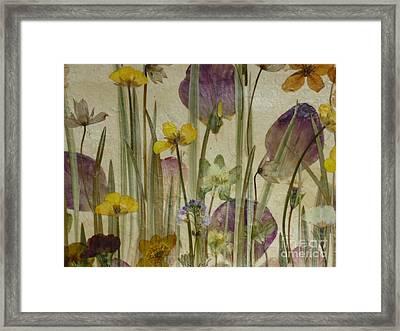 Spring Meadow No 1. Framed Print by Kaye Miller-Dewing