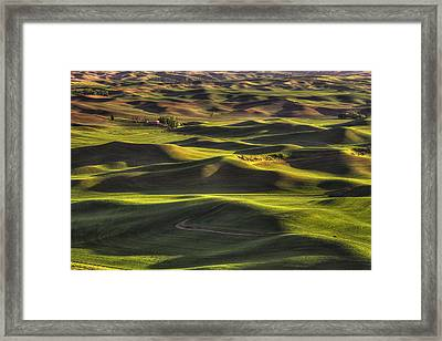 Spring On The Palouse Framed Print by Mark Kiver