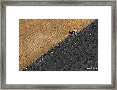 Spring Plowing Framed Print by Robert Lacy