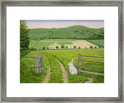 Spring Rabbit Framed Print by Ditz