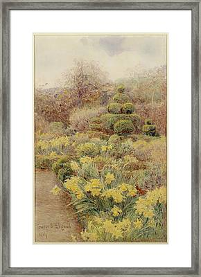 Spring   Raunds Cliffe Framed Print by George Samuel Elgood