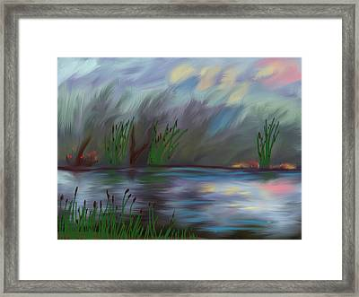 Spring Reed In The Canyon Framed Print by Angela A Stanton