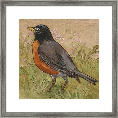 Spring Robin 2 Framed Print by Tracie Thompson