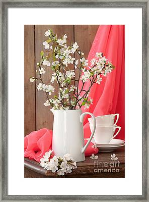 Spring Still Life Framed Print by Amanda And Christopher Elwell