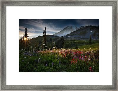 Spring Time At Mt. Rainier Washington Framed Print by Larry Marshall