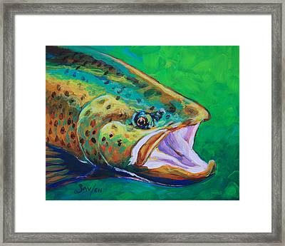 Spring Time Brown Trout- Fly Fishing Art Framed Print by Savlen Art