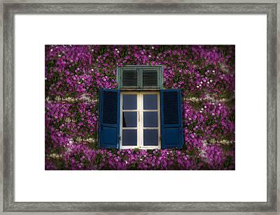 Spring Window Framed Print by Radoslav Nedelchev