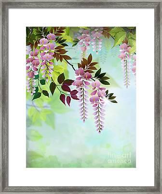 Spring Wisteria Framed Print by Bedros Awak
