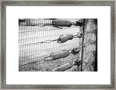 Springs On The Fence Framed Print by Christi Kraft