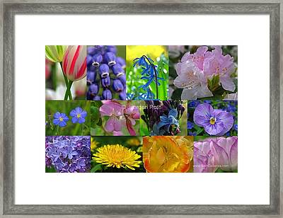 Springtime Entertainment Framed Print by Juergen Roth