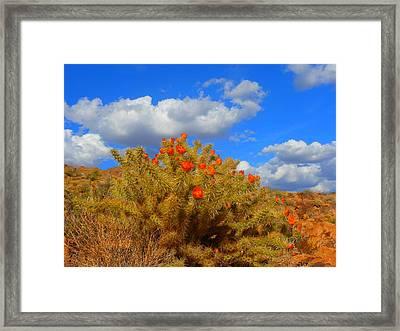 Springtime In Arizona Framed Print by James Welch